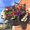 Pro-Series PLUS Hanging Basket