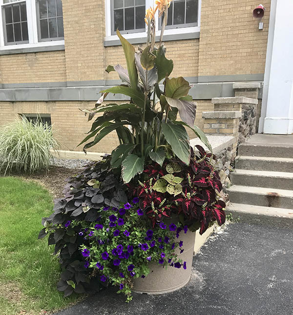 Morrisville Rolled Rim Planters