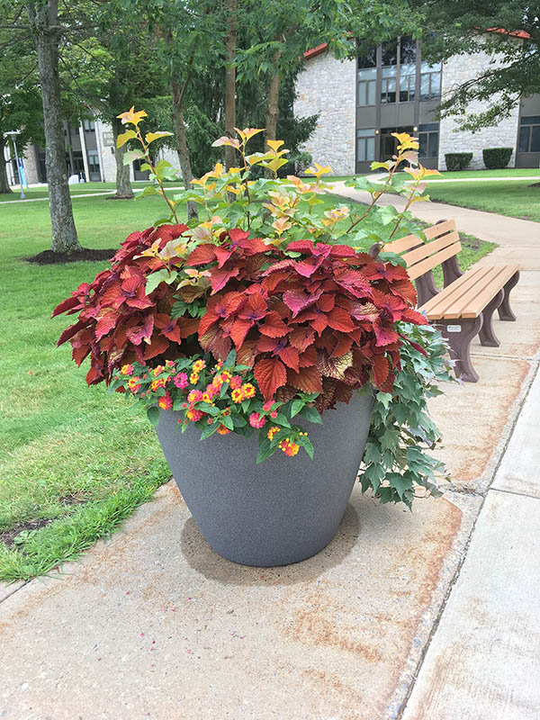 Commercial Planters Pittsburgh